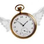 clock-wings